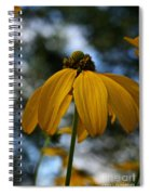 Natural Summer Colors Spiral Notebook