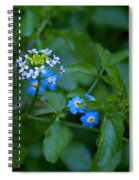 Natural Wonders Spiral Notebook