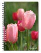 Naturally Feminine Spiral Notebook