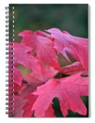 Naturally Vibrant Spiral Notebook
