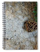 Nature Decorations Spiral Notebook