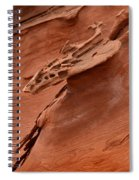 Natures Artwork Spiral Notebook