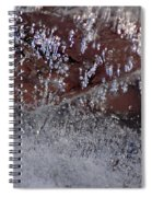 Natures Best Etching  Spiral Notebook