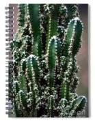 Nature's Cactus Abstract 2 Spiral Notebook