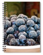 Nature's Candy Spiral Notebook