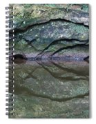 Nature's Carving Spiral Notebook