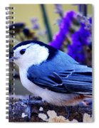 Nature's Charm... Spiral Notebook