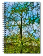 Nature's Church Windows  Spiral Notebook