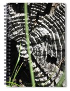 Nature's Creativity Spiral Notebook