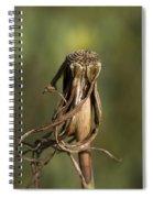 Nature's Dance Spiral Notebook