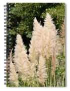 Nature's Feather Dusters Spiral Notebook