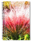 Nature's Fireworks  Spiral Notebook