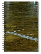 Natures Ice Cross Michigan Spiral Notebook