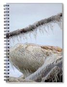 Natures Ice Sculptures 3 Spiral Notebook