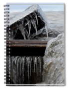 Natures Ice Sculptures 5 Spiral Notebook
