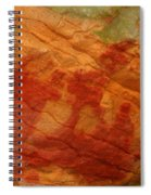 Nature's Palette In Stone Spiral Notebook