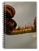 Nature's Red Carpet Unfurling Spiral Notebook