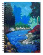 Natures Red White And Blue Spiral Notebook
