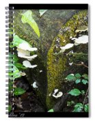 Natures Right Angle Degrees Spiral Notebook