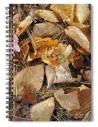 Nature's Still Life 1 Spiral Notebook