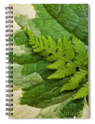 Nature's Still Life 3 Spiral Notebook