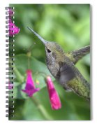 Nature's Treasures  Spiral Notebook