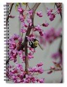 Natures View Spiral Notebook