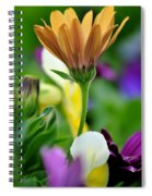 Natures Yoga Spiral Notebook