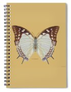 Nawab Butterfly Spiral Notebook