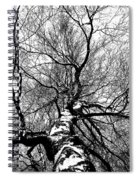 Neighbours Birch ... Spiral Notebook