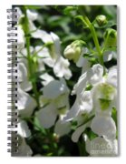 Nemesia Named Poetry White Spiral Notebook