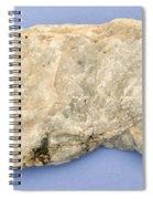 Nepheline Spiral Notebook