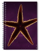 Netted Sea Star Spiral Notebook