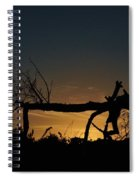 Nevergreen Tree Spiral Notebook