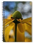 New Cone Flower Spiral Notebook
