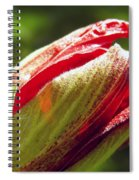 New Hibiscus Spiral Notebook