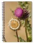 New Mexico Thistle II Spiral Notebook