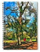 New Orleans Sculpture Park Spiral Notebook