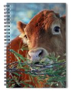 New Years Morning Cow Spiral Notebook