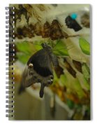 Newborn At The Butterfly Factory  Spiral Notebook