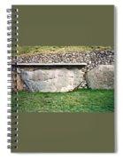 Newgrange Runes Spiral Notebook