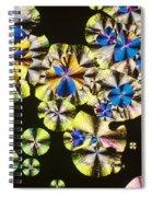 Niacin Spiral Notebook