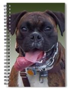 Nice Doggy Spiral Notebook