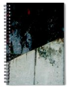 Night Moods Spiral Notebook