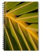 Niu - Cocos Nucifera - Hawaiian Coconut Palm Frond Spiral Notebook
