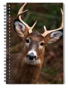No Hunting Allowed Spiral Notebook