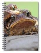 No Privacy Spiral Notebook