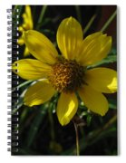 Nodding Bur Marigold Spiral Notebook
