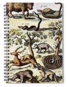 North America: Fauna Spiral Notebook