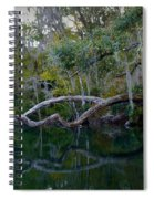 North Florida River Reflections Spiral Notebook